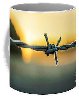 Frost On Barbed Wire At Sunrise Coffee Mug