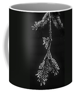 Frosted Pine Branch Coffee Mug