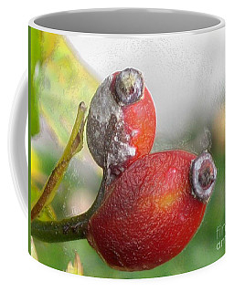 Coffee Mug featuring the photograph Frosted Rosehips by Nina Silver