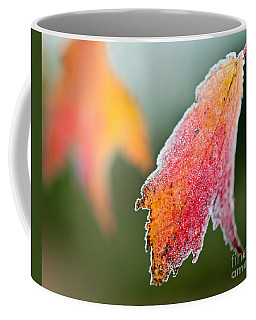 Frosty Leaf Coffee Mug by Kerri Farley