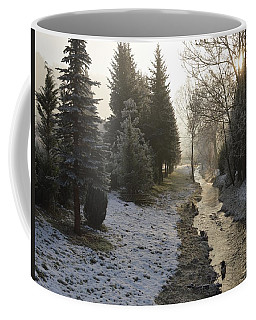 Coffee Mug featuring the painting Frozen Light by Felicia Tica