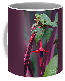 Fuchsia Delight Coffee Mug by Byron Varvarigos