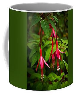 Fuchsia Flowers Coffee Mug by Jane McIlroy