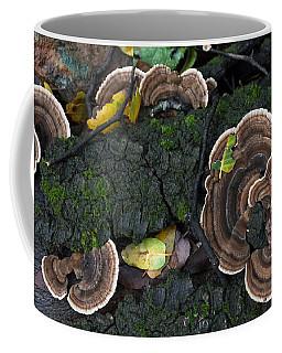 Fungi Contrast Coffee Mug