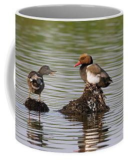 Gadwall And Pochard Coffee Mug