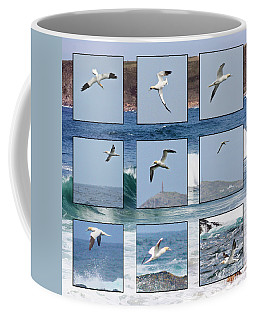 Gannets Galore Coffee Mug by Terri Waters