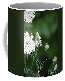 Garden Lace Group By Jammer Coffee Mug