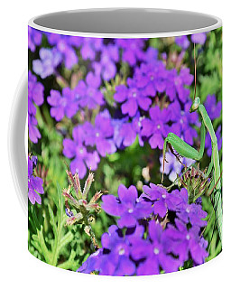 Garden Prayer Coffee Mug