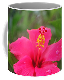 Coffee Mug featuring the photograph Garden Rains by Miguel Winterpacht