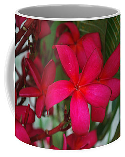 Coffee Mug featuring the photograph Garden Treasures by Miguel Winterpacht