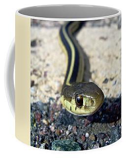 Garter Snake Coffee Mug by Kent Lorentzen