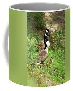 Geese And Gosling Coffee Mug