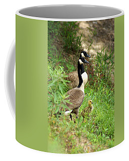 Geese And Gosling Coffee Mug