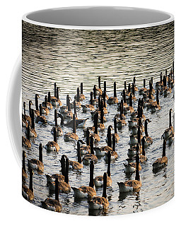 Geese In Sunset Light Coffee Mug