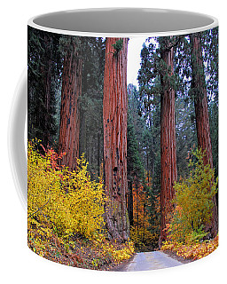 General's Highway Coffee Mug by Lynn Bauer