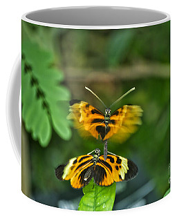 Coffee Mug featuring the photograph Gentle Butterfly Courtship 03 by Thomas Woolworth