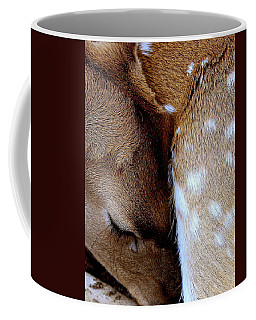 Gentle Sleep Coffee Mug