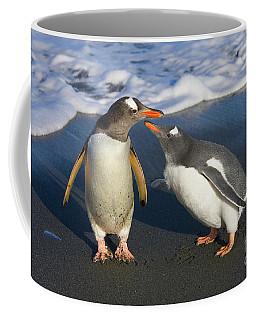Gentoo Penguin Chick Begging For Food Coffee Mug