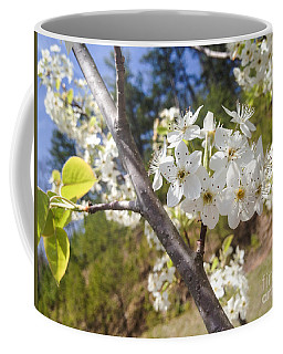 Georgia Blossoms Coffee Mug