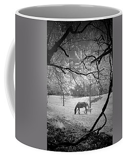 Georgia Horses Coffee Mug by Bradley R Youngberg
