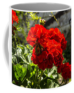 Coffee Mug featuring the photograph Geranium Bloom by Mez