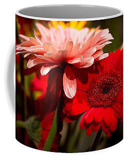 Gerbera Daisies Coffee Mug