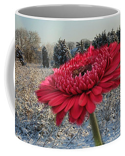 Gerbera Daisy In The Snow Coffee Mug