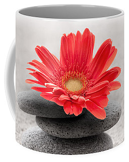 Gerbera Reflection Coffee Mug