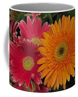 Coffee Mug featuring the photograph Gerbera by William Norton