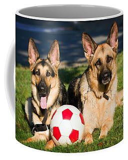 Coffee Mug featuring the photograph German Shepherd Sisters by Eleanor Abramson