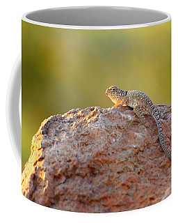 Getting Some Sun Coffee Mug