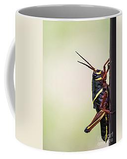 Giant Eastern Lubber Grasshopper Coffee Mug