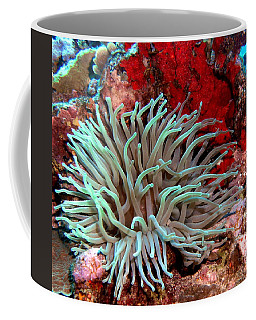 Giant Green Sea Anemone Against Red Coral Coffee Mug