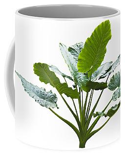 Giant Leaf Coffee Mug