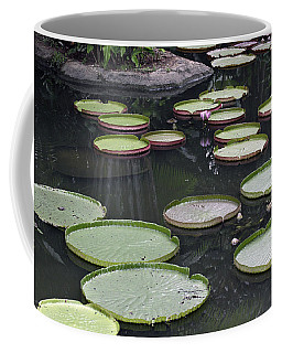Coffee Mug featuring the photograph Giant Lily Pads by Shoal Hollingsworth