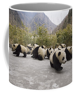 Animal Behaviour Coffee Mugs