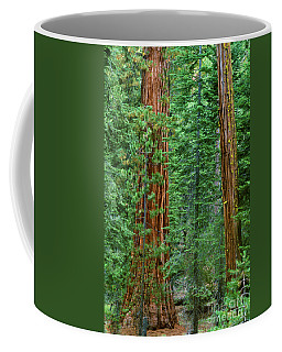 Giant Sequoias Sequoiadendron Gigantium Yosemite Np Ca Coffee Mug by Dave Welling