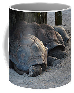 Coffee Mug featuring the photograph Giant Tortise by Robert Meanor