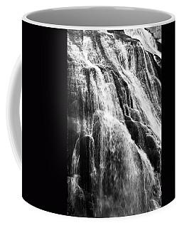 Gibbon Falls Coffee Mug