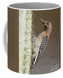 Coffee Mug featuring the photograph Gila Woodpecker by Deb Halloran