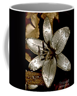 Coffee Mug featuring the photograph Gilded  Lilies 2 by Linda Bianic