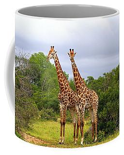 Giraffe Males Before The Storm Coffee Mug