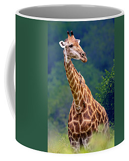 Giraffe Portrait Closeup Coffee Mug