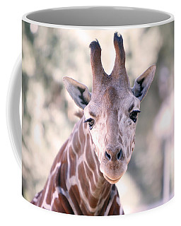 Coffee Mug featuring the pyrography Giraffe Staring  by Shoal Hollingsworth