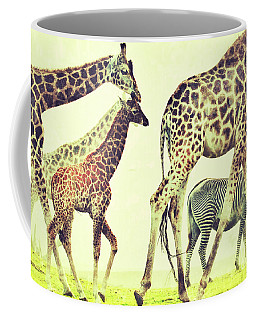 Coffee Mug featuring the photograph Giraffes And A Zebra In The Mist by Nick  Biemans