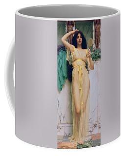 Girl With A Mirror Coffee Mug