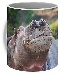 Coffee Mug featuring the photograph Give Me A Kiss Hippo by Eti Reid