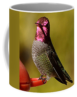 Coffee Mug featuring the photograph Glimmering Red Headed Mail Anna by Jay Milo