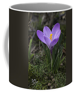 Coffee Mug featuring the photograph Glorious Crocus by Betty Denise