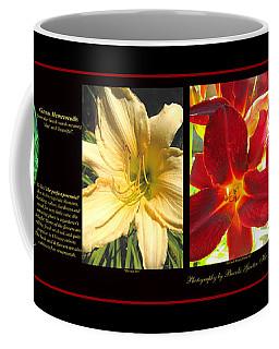 Glorious Daylilies Coffee Mug